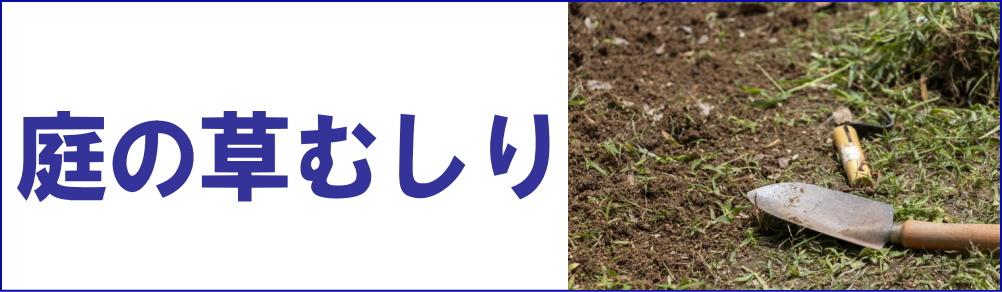 お庭の草むしり